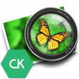 Focus CK