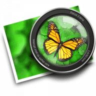 Focus free download for Mac