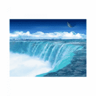 Interactive Fish Pond Game free download for Mac