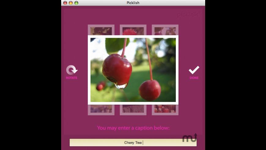 Picklish for Mac - review, screenshots