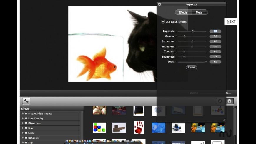 Webify for Mac - review, screenshots