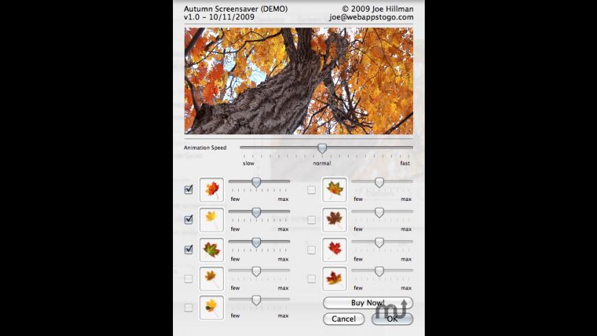 Autumn Screensaver for Mac - review, screenshots