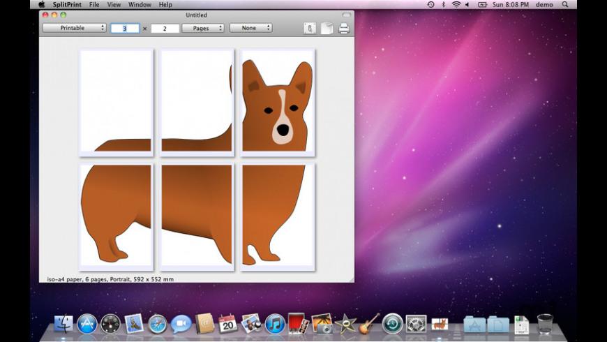 SplitPrint for Mac - review, screenshots