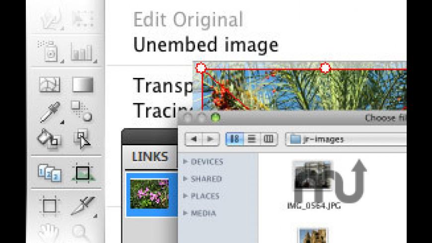 Rasterino for Mac - review, screenshots