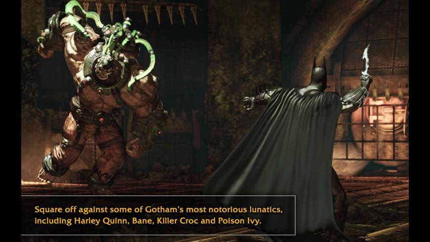 Batman Arkham Asylum for Mac - review, screenshots