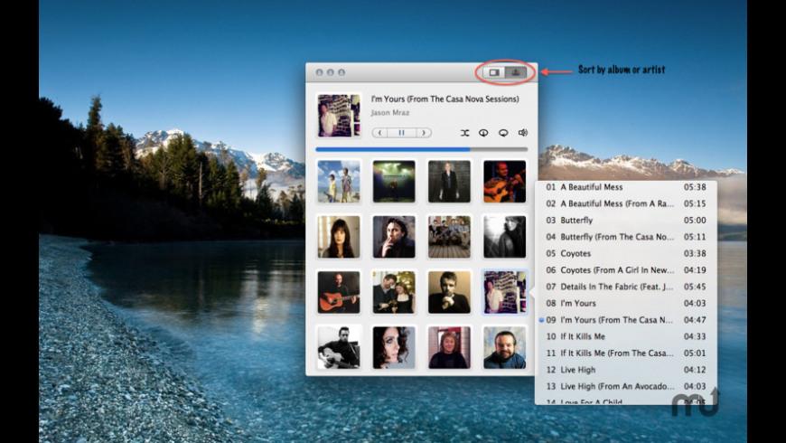 Lychee for Mac - review, screenshots