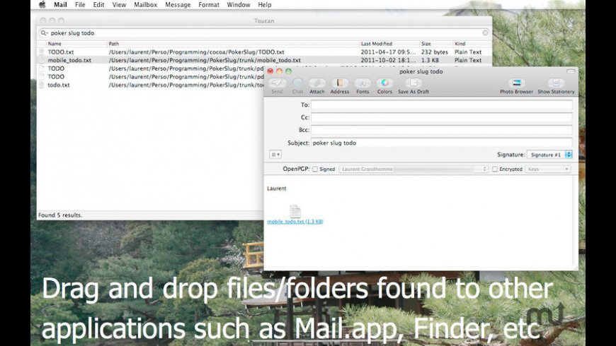 Toucan Search for Mac - review, screenshots