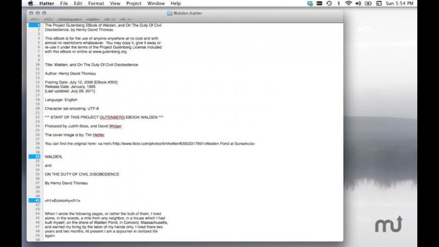 Hatter for Mac - review, screenshots