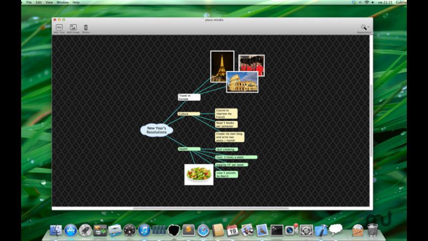 Mindix for Mac - review, screenshots