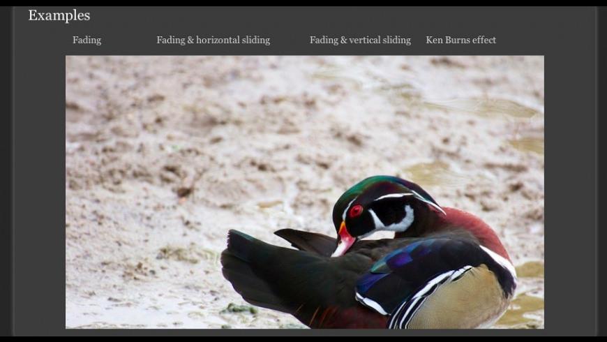 Image SlideShow Stack for Mac - review, screenshots