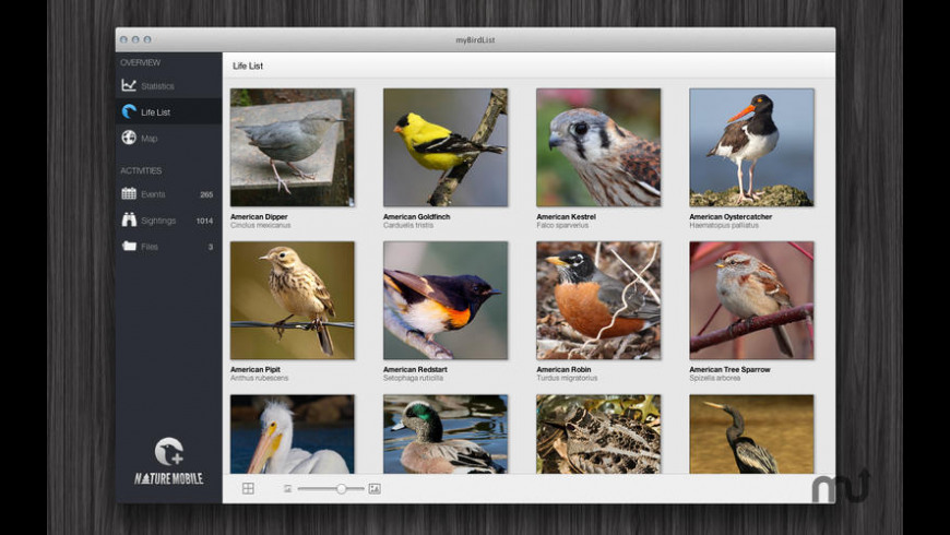 myBirdList for Mac - review, screenshots