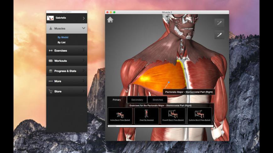 iMuscle for Mac - review, screenshots