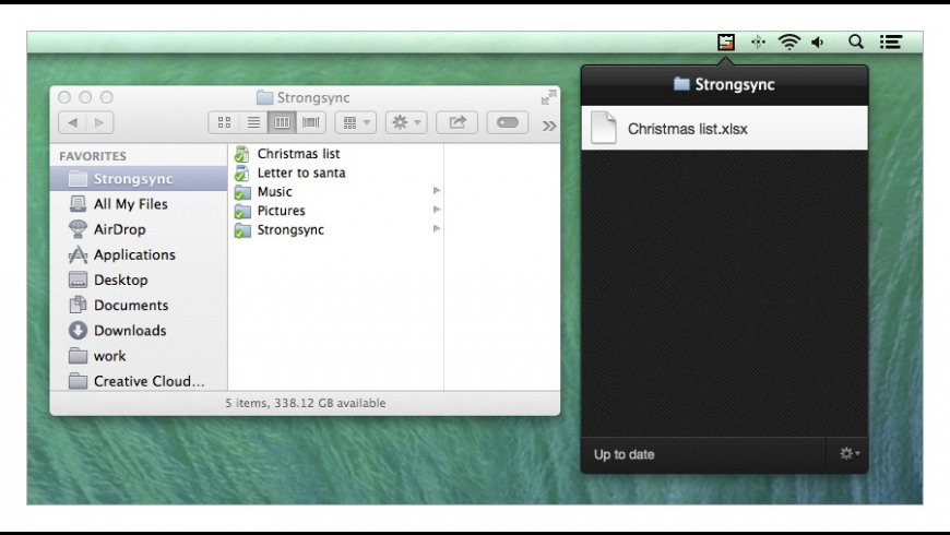 Strongsync for Mac - review, screenshots