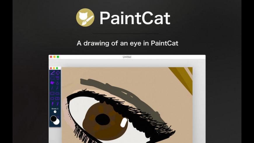 PaintCat for Mac - review, screenshots