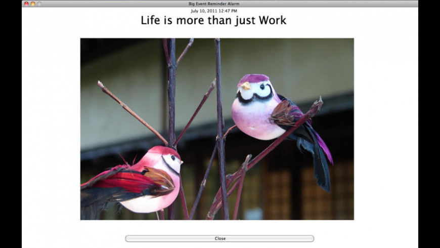 Big Event Reminder for Mac - review, screenshots