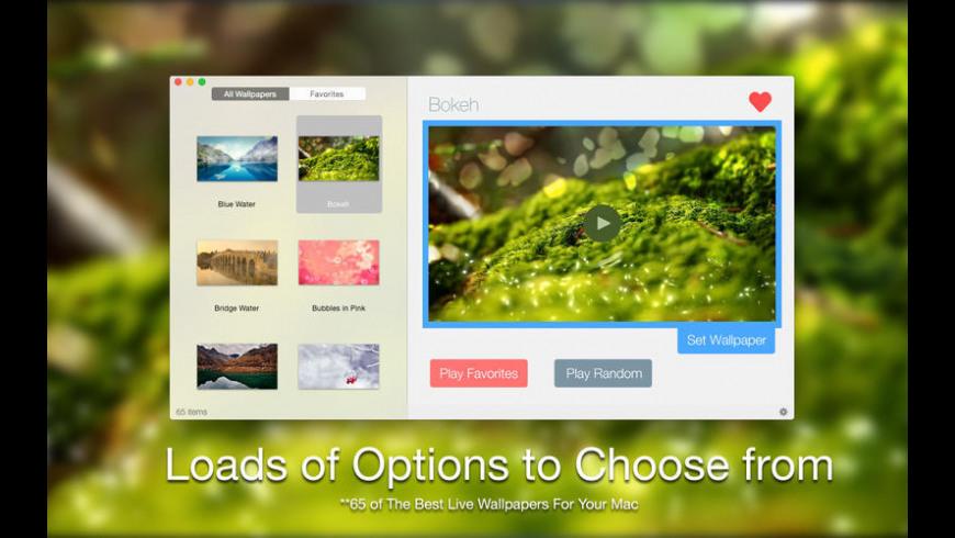 Live VideoWall for Mac - review, screenshots
