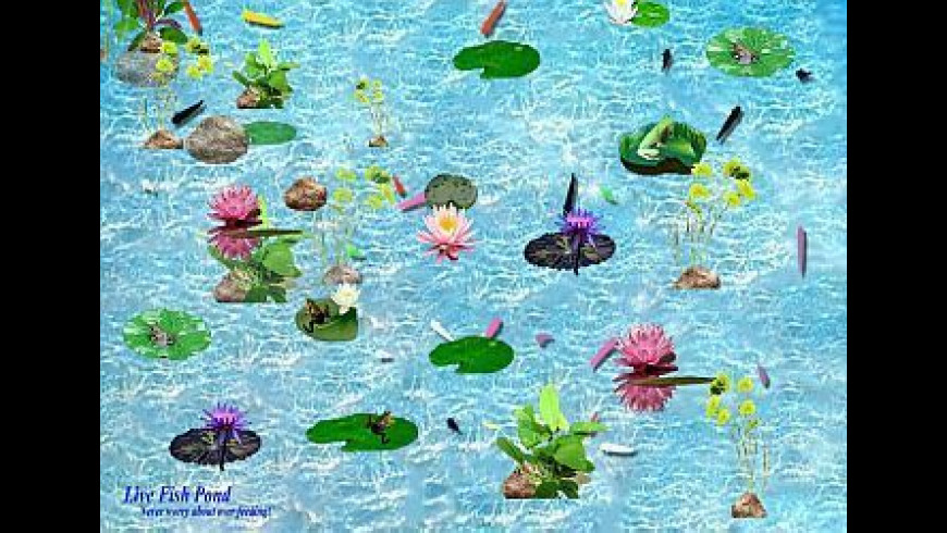 Interactive Fish Pond Game for Mac - review, screenshots