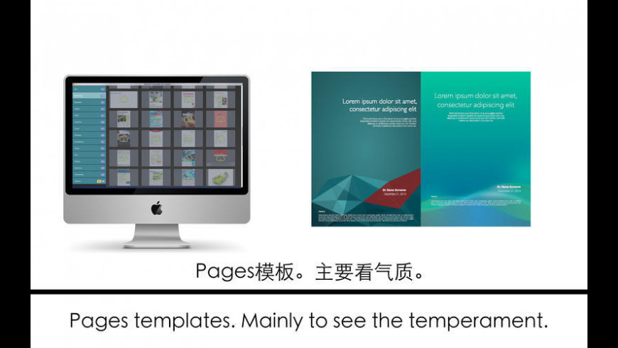 Professional templates for Pages for Mac - review, screenshots