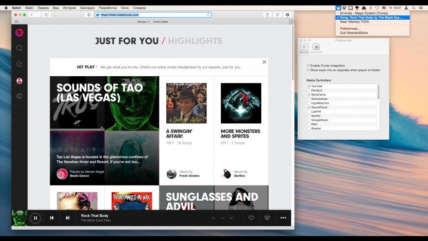 BeardedSpice for Mac - review, screenshots
