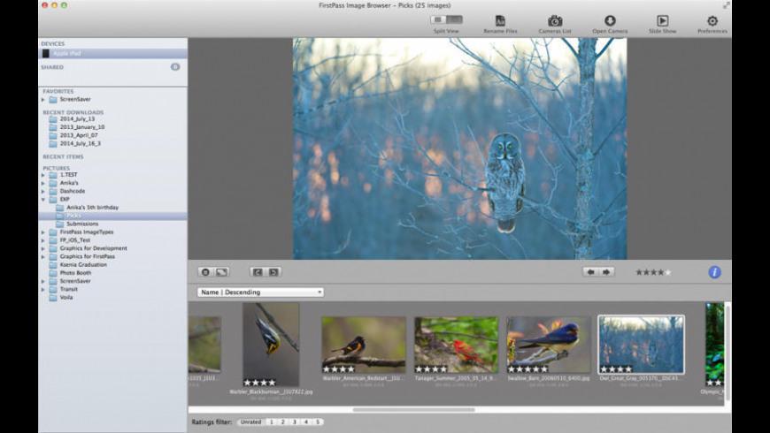 FirstPass Image for Mac - review, screenshots