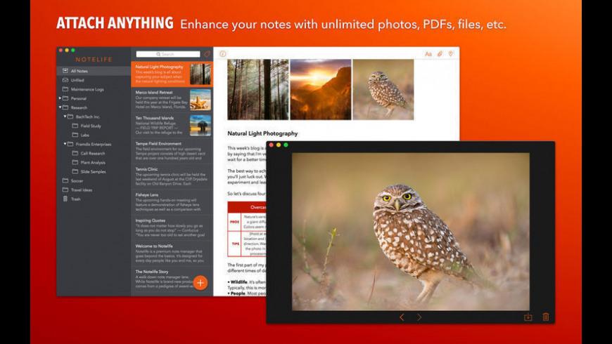 Notelife for Mac - review, screenshots