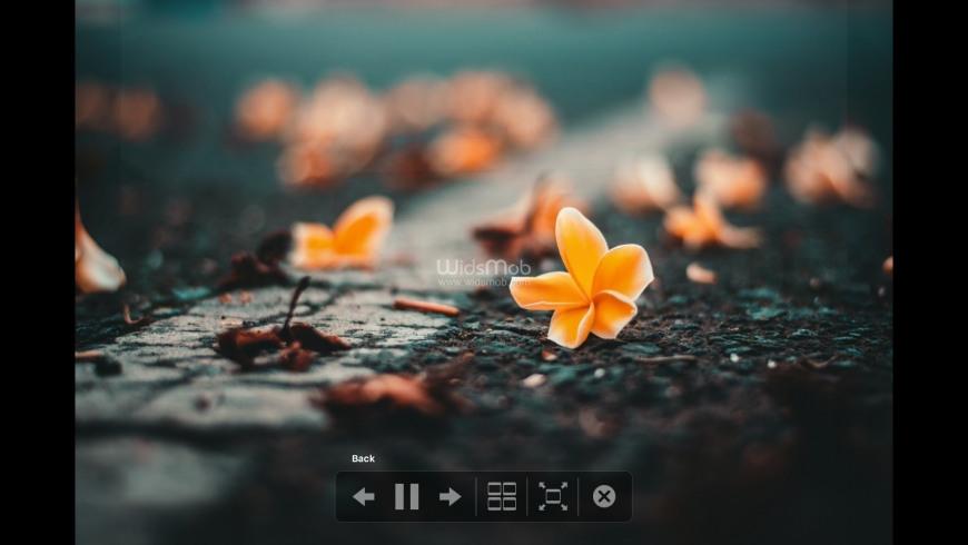 WidsMob PhotoVault for Mac - review, screenshots
