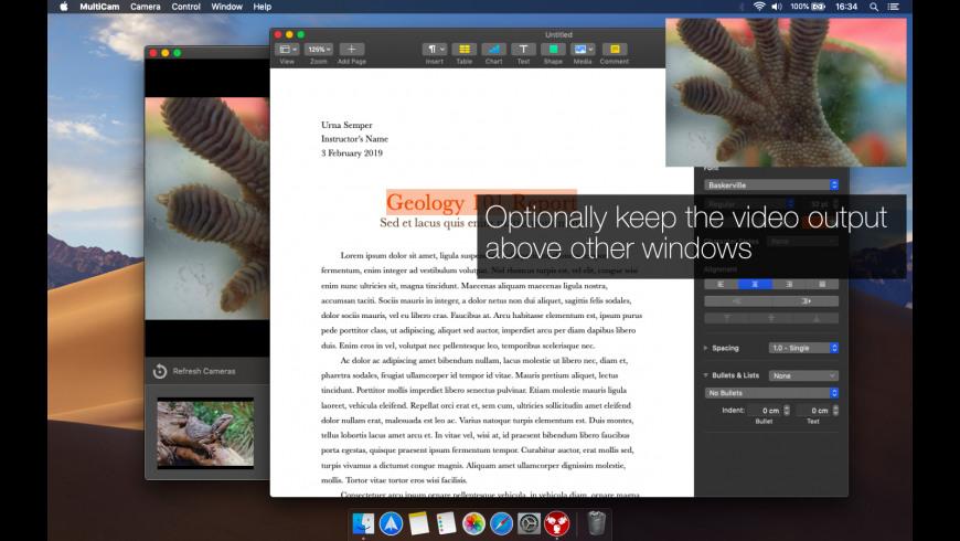 MultiCam for Mac - review, screenshots